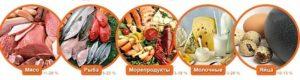 Какие продукты содержат большое количество белков
