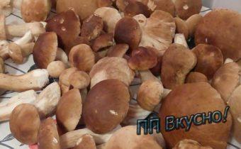 Как из белых грибов сварить диетический суп-пюре