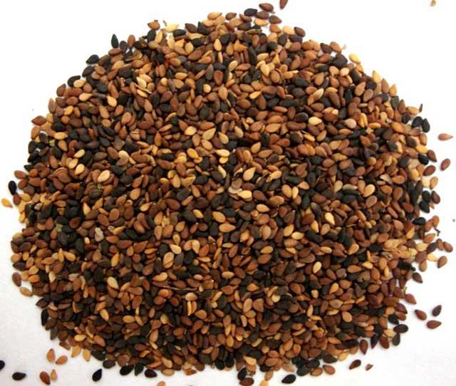 Семена кунжута: польза и вред для женщин и мужчин