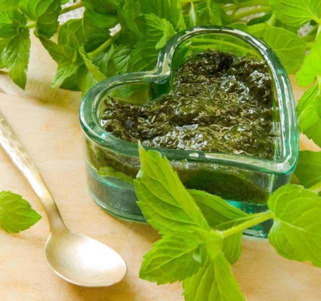 Мятный соус: универсальные рецепты к мясу, рыбе, овощам