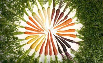Диетический салат из моркови:7 пп-рецептов для похудения