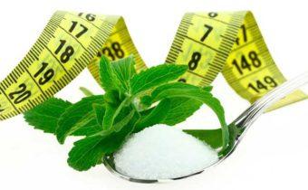 Заменитель сахара стевия - всё про вред, пользу, калорийность и использование в ПП